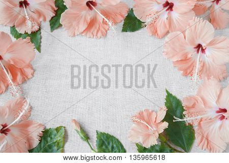 Pink peachy Hibiscus flowers on linen copy space background