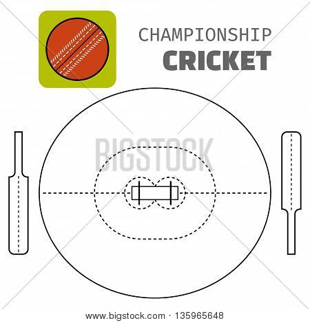 Cricket. Flat color icon sports ball and field plan. Vector illustration