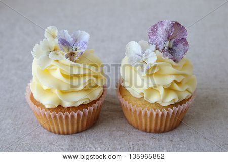 Yellow Cupcakes With Purple Sugared Edible Flowers On Linen Background.