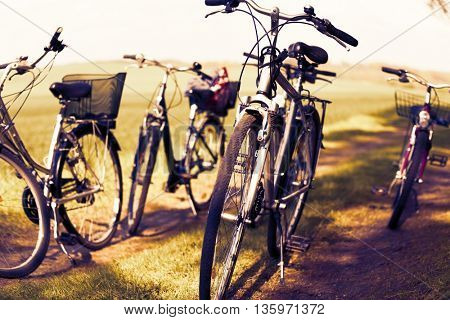 Bicycles in the meadow for family