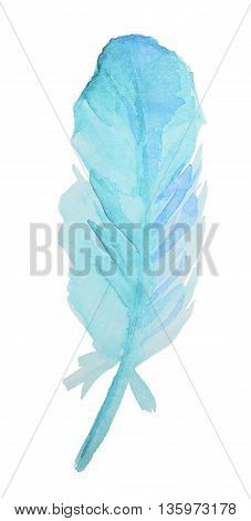 Hand-drawn Watercolor blue Feather isolated on white background