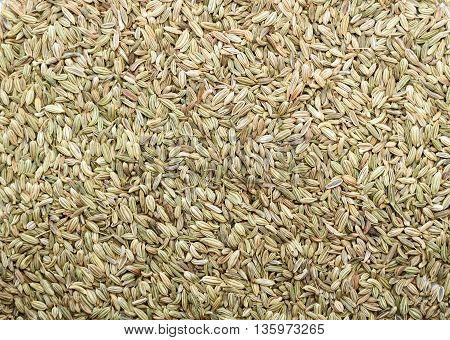 Top view of Fennel seeds background texture