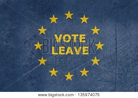 Vote leave European flag flag in official colors.