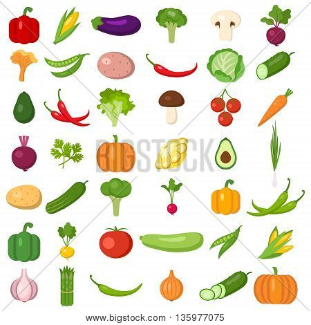 Set of vegetables. Different colorful vegetables. All kinds of green vegi for cooking meals, planting in garden.
