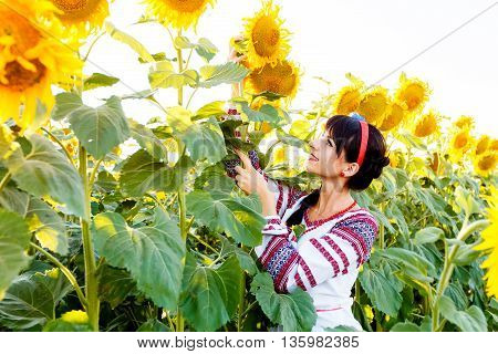 Beautiful smiling girl in national ukrainian blouse embrodery holding a sunflower on a field at backlight