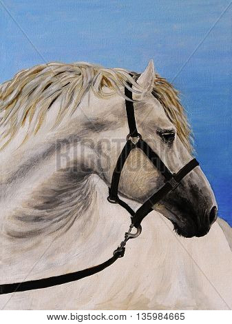 Oil painting on canvas - white horse in the furrow