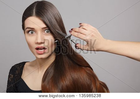 Portrait of frightened woman with modern hairstyle in studio. Hairdresser cutting gorgeous hair with hairdressing scissors over grey background.
