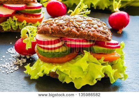 Veggie burgers (green salad fresh cucumber tomato radish) and radish on dark background.