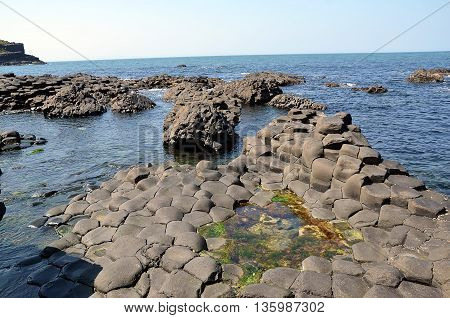 Detail Of Giant Causeway Nature Landscape In Ireland