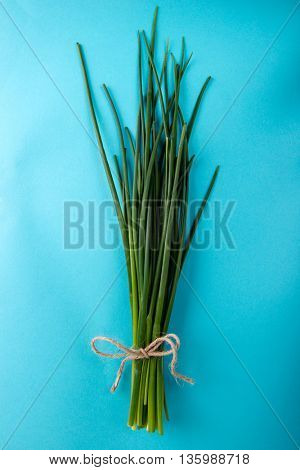 Fresh green chives on blue background