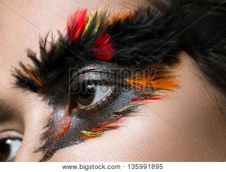 Beautiful girl in the image of the Phoenix bird with creative makeup .The beauty of the face. Close up. Photos shot in studio