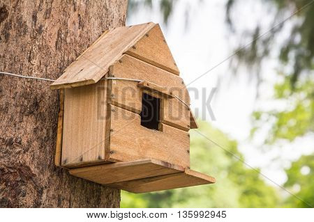 The Birdhouse.