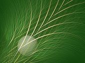 foto of fescue  - fractal rendering of a golf ball in the rough - JPG
