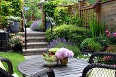 Small townhouse perennial summer garden. Also available in vertical.  poster