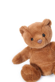 pic of stuffed animals  - generic teddy bear positioned on the right side of a white background  - JPG