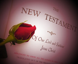 stock photo of holy-spirit  - A photo of a rose laying on a bible - JPG