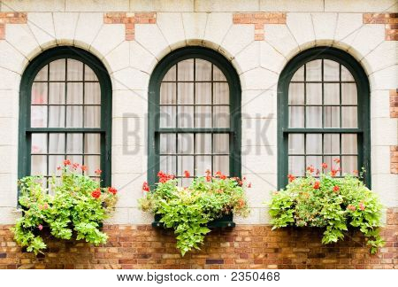 Frontenac'S Castle Windows