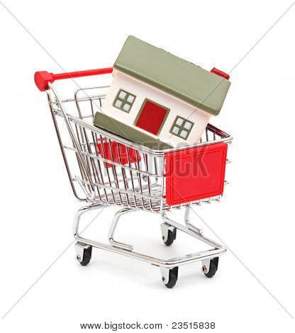 shopping cart trolley with house