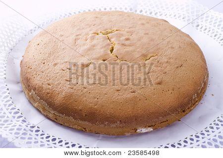 Cake base over white background
