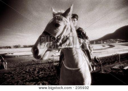 Horse And Jockey1a
