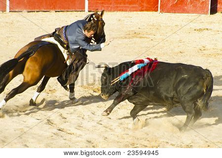 MADRID, SPAIN - SEPTEMBER 10: bullfighter on horseback, bullfight. September 10, 2010 in Madrid (Spain)