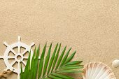 Summer Background With Green Palm Leaf, Decorative Ship Steering Wheel And Shells. Beach Texture. Co poster