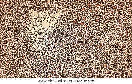 Pattern Background Leopard.epsPattern background leopard