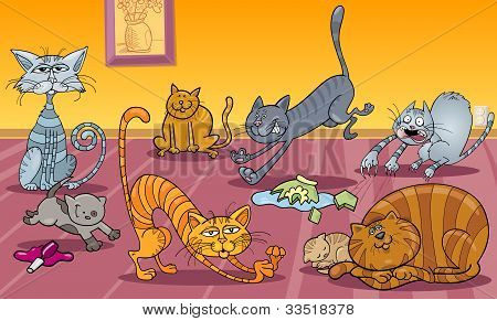 Many Cats At Home