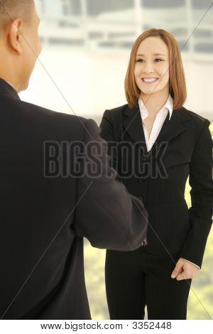 Business Team Shake Hand