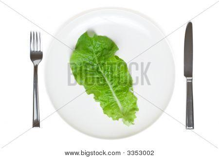 Single Lettuce Leaf On A Plate