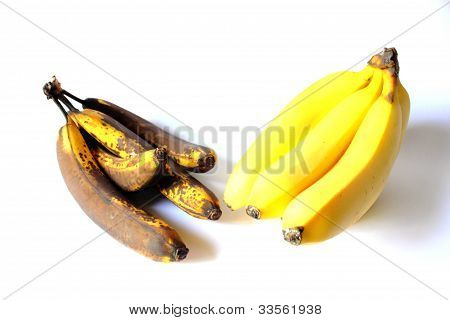 Ripe and Spoiled Bananas