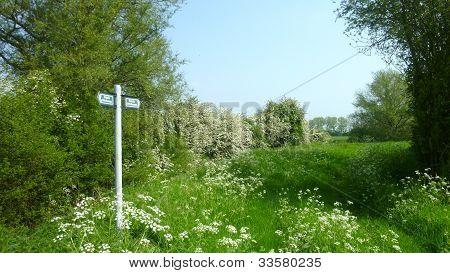 A Countryside Public Bridleway