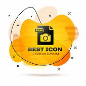 Black Raw File Document. Download Raw Button Icon Isolated On White Background. Raw File Symbol. Abs poster