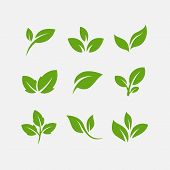 Green Leaf Ecology Nature Element Vector Icon, Leaf Icon, Green Leaf Ecology Nature Element Vector poster