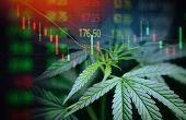 Business Cannabis Marijuana Stock Exchange Market Graph Business / Cannabis Leaves On Trading And In poster