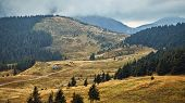 Beautiful Hills With Yellow Grass Scenic Outdoor Expedition Travel View, Autumn Rural Landscape With poster
