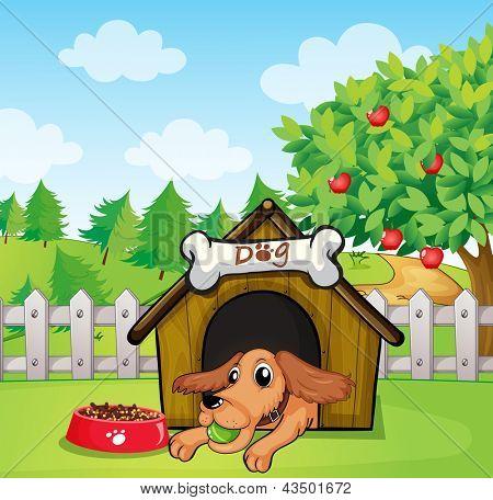 Ilustração de um cão com uma bola dentro de uma casinha de cachorro