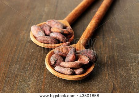 Cocoa beans in spoons on wooden background