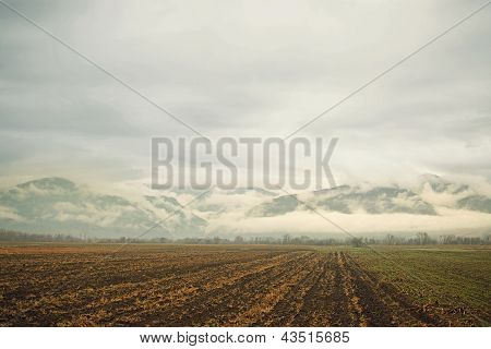 Field, Mountains & Clouds