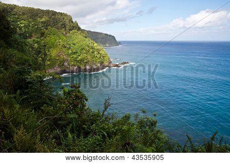Maui's Lush Coastline