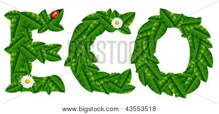 Natural Ecology Concept With Leaves