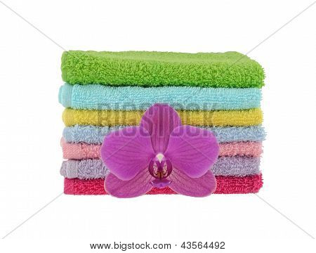 Terry Wash Cloths and Orchid