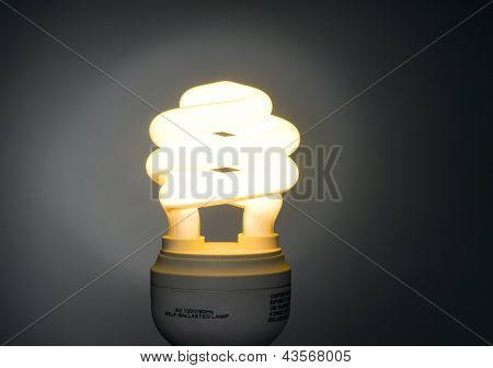 Warm Color Low Wattage Self Ballasted Fluorescent Light Bulb