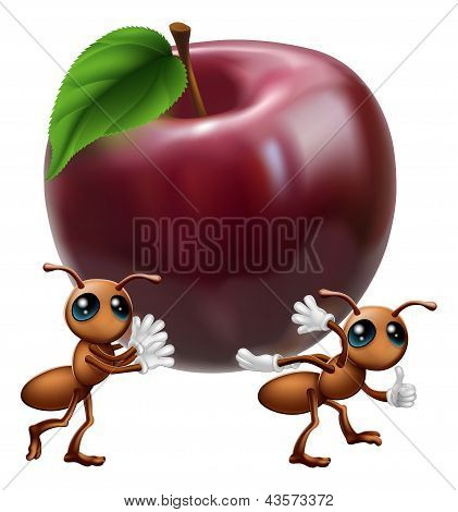 Ants Carrying A Big Apple
