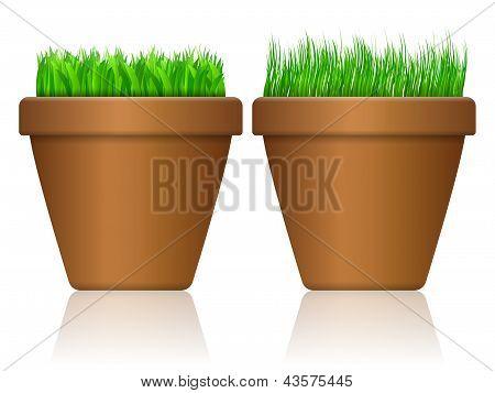 Flowerpot With Grass