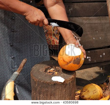Women Selling Fruits Of Coconut Tree, Sri Lanka