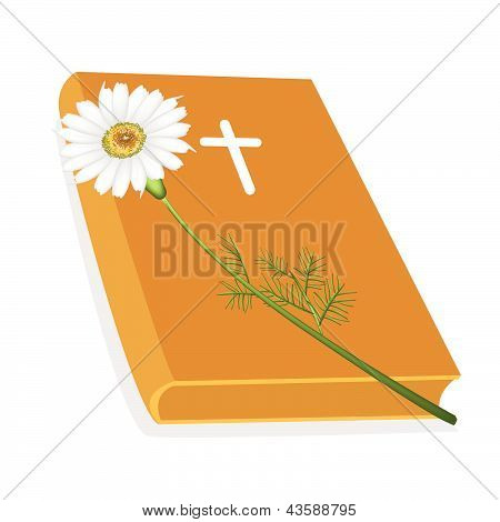 Holy Bible With Wooden Cross And Daisy Flower