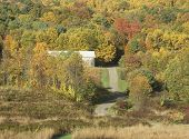 picture of tobacco barn  - A New England hillside in fall with brilliant colorful foliage and long grasses in the fields - JPG