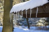picture of icicle  - Icicles on roof with snow - JPG