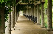 stock photo of pergola  - Italian Pergola in Maymont Gardens - JPG